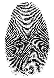 Image of a Fingerprint