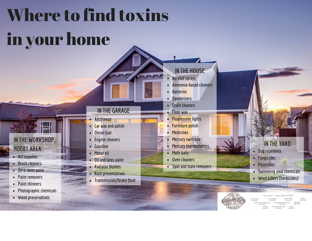 home_toxins