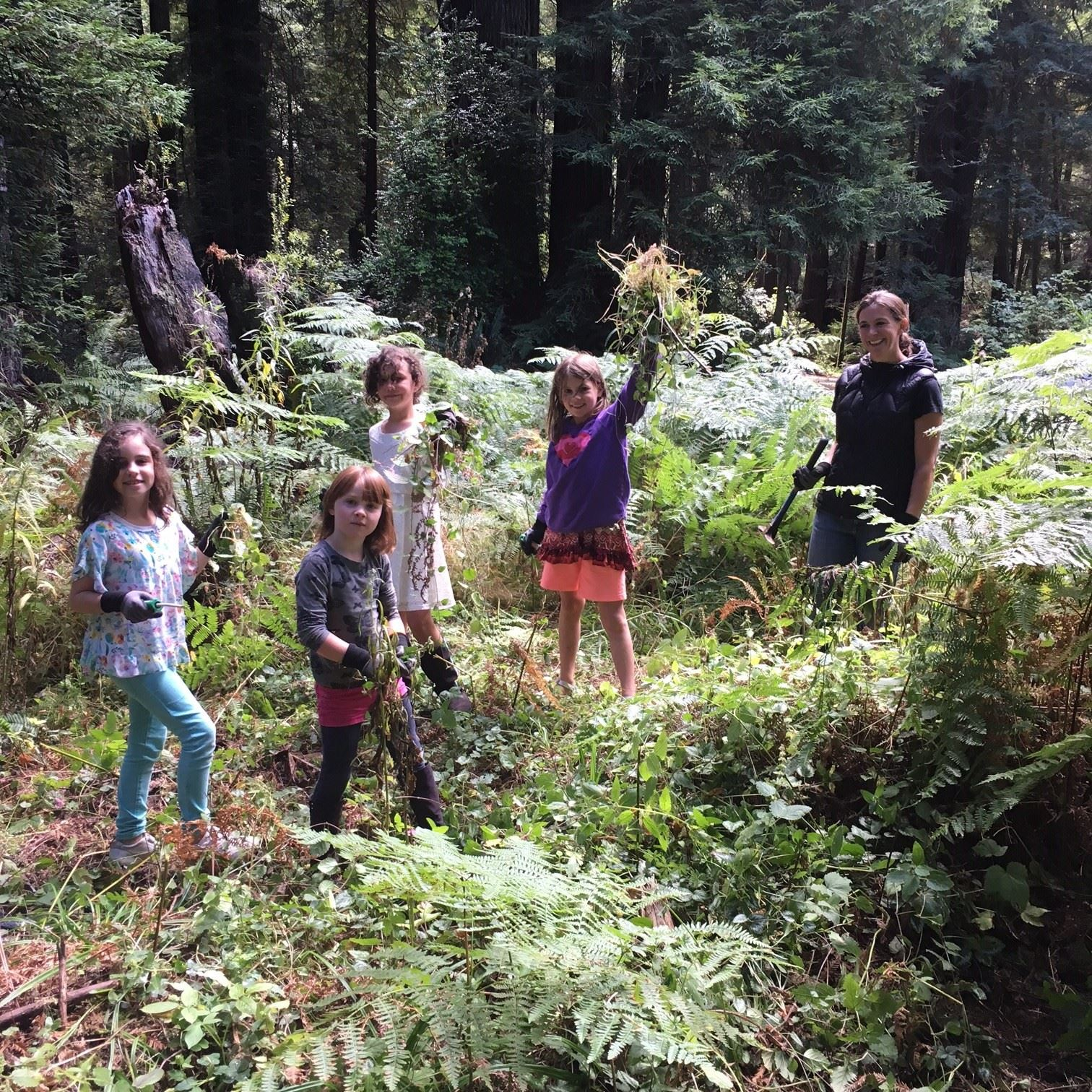 8-13-2016 Arcata Communitiy Forest Volunteer Work Day