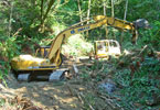 Heavy equipment working in a wooded area